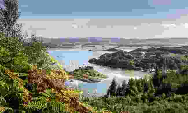 View from Crinan Wood over Crinan harbour (Dreamstime)