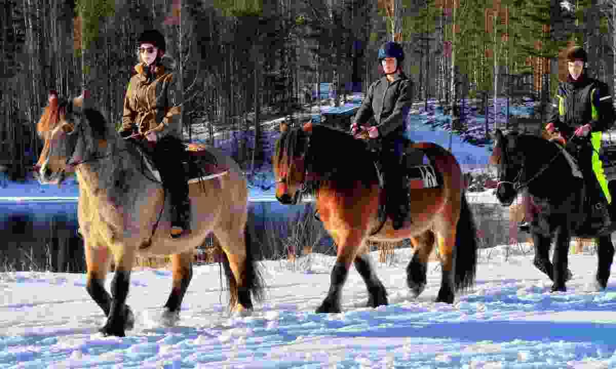 Riding in the snow (Exodus)