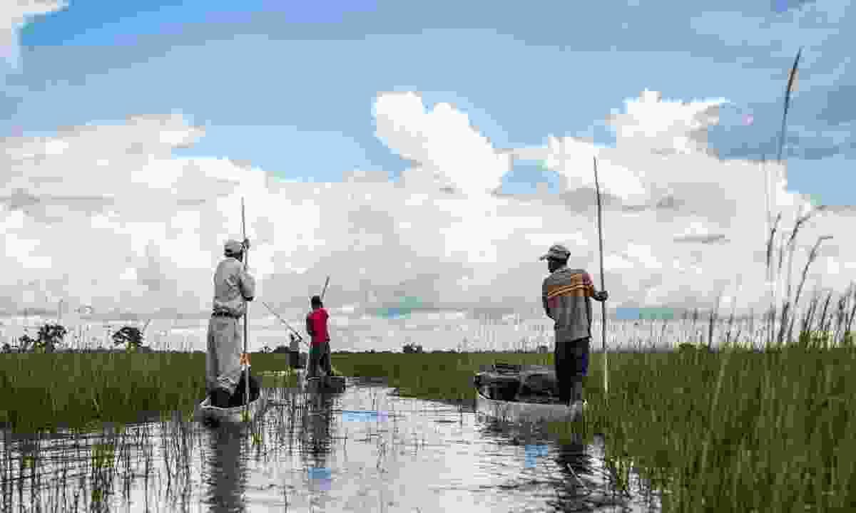 Exploring the watery wonderland of Botswana's Okavango Delta aboard a mokoro, a traditional dugout canoe (Shutterstock)