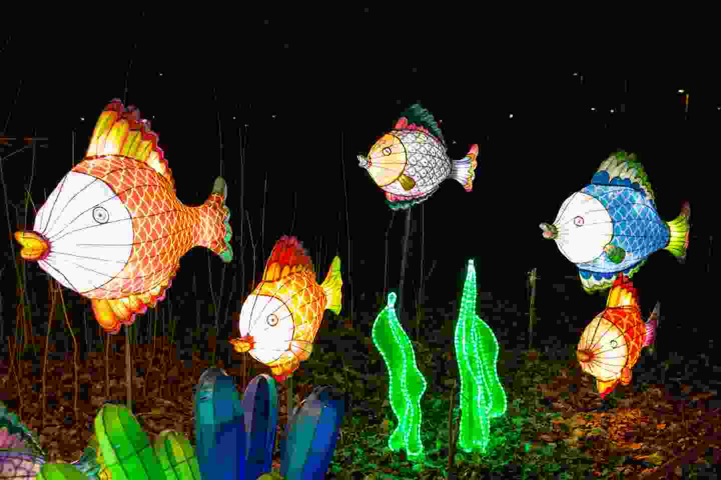 Chinese Fish Decorations (shutterstock)