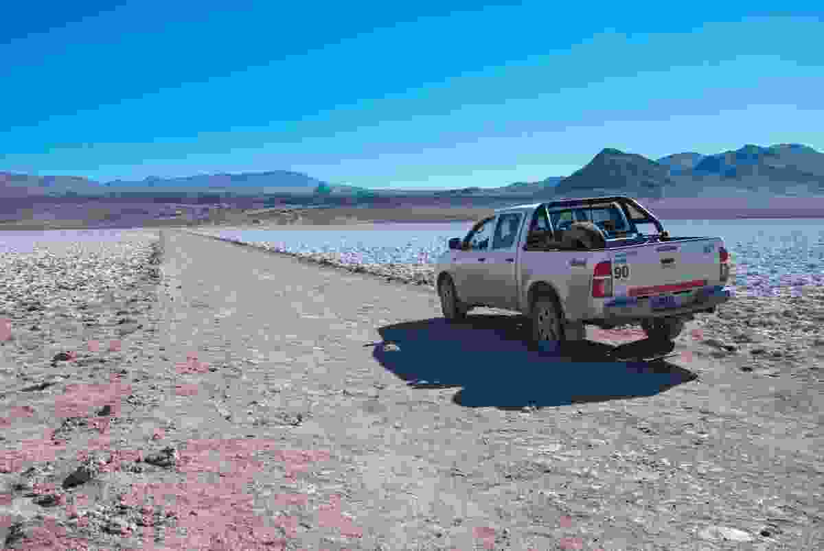 We stopped several times to admire the glittering surface of the Salar de Arizaro (Lyn Hughes)