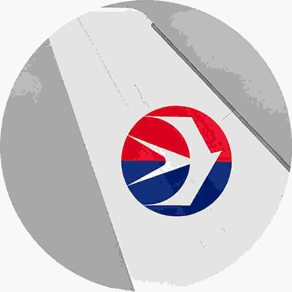 The China Eastern swallow represents hope, excellence and passion (Shutterstock)