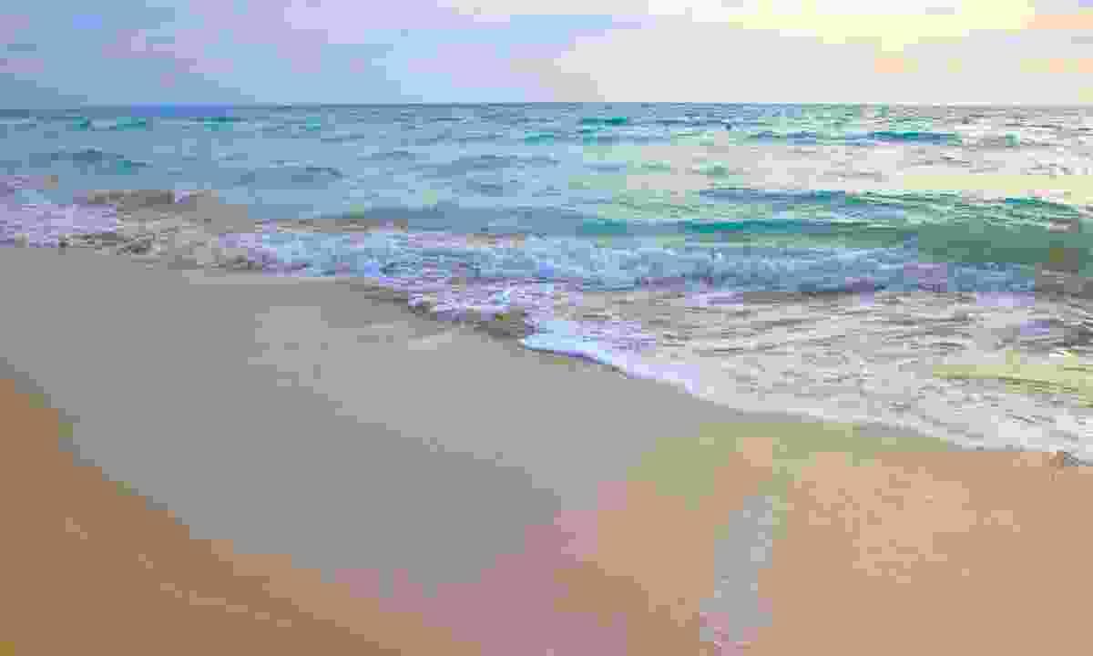 The sandy Punta Prosciutto beach in Apulia (Dreamstime)