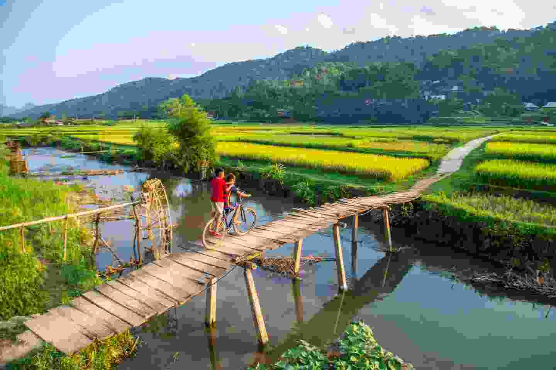 Boys riding on a wooden bridge in Vietnam (Shutterstock)