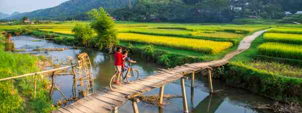 Boys riding on a wooden bridge in Vietnam (Shutterstock)