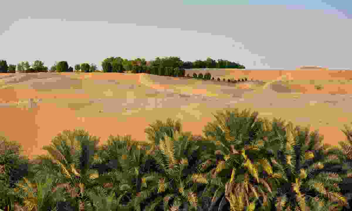 Liwa Oasis, Abu Dhabi, UAE (Dreamstime)
