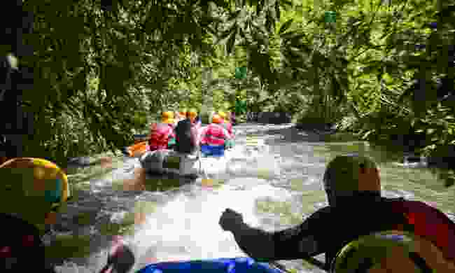 Rafting through the jungle (Dreamstime)