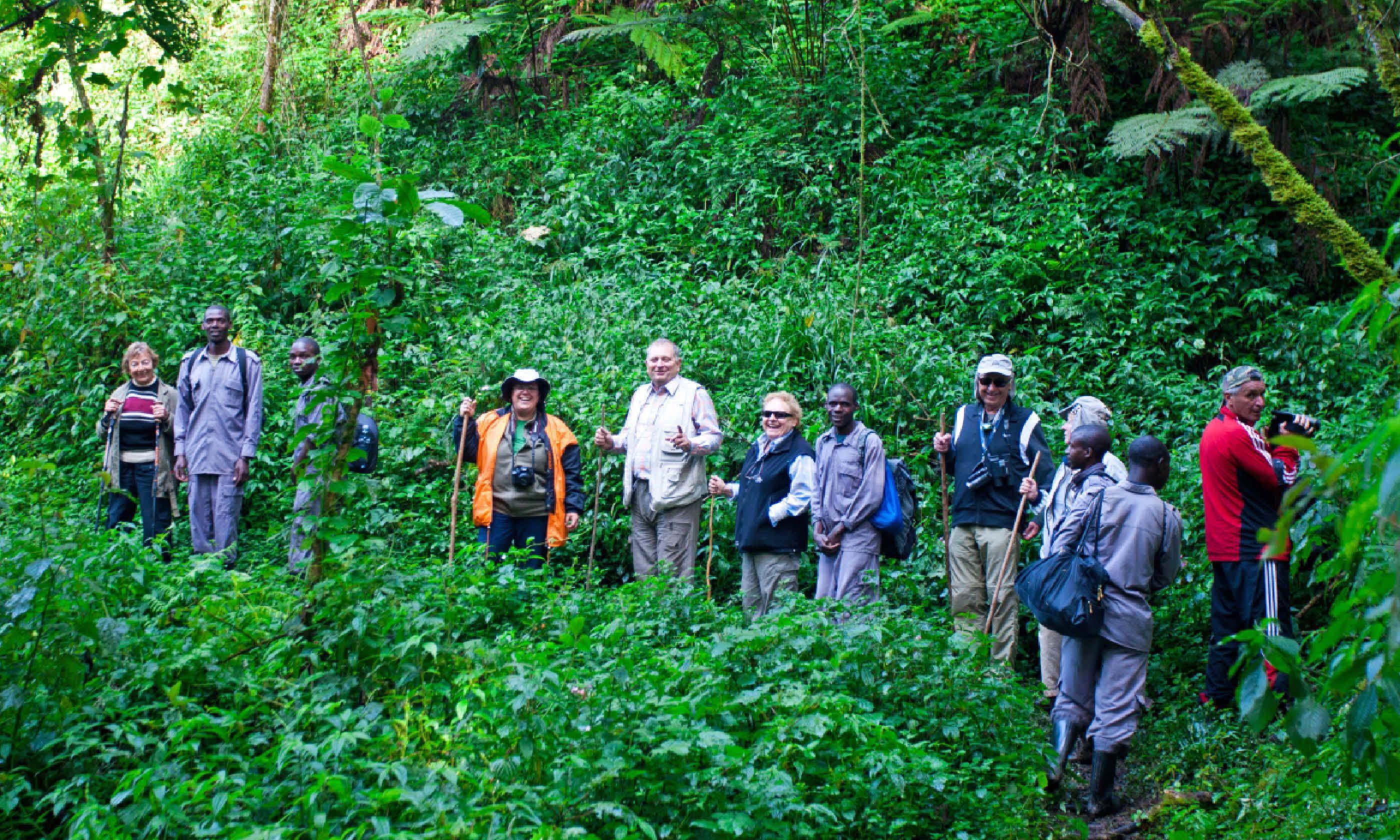 Tourists looking for mountain gorillas, Bwindi (Shutterstock)
