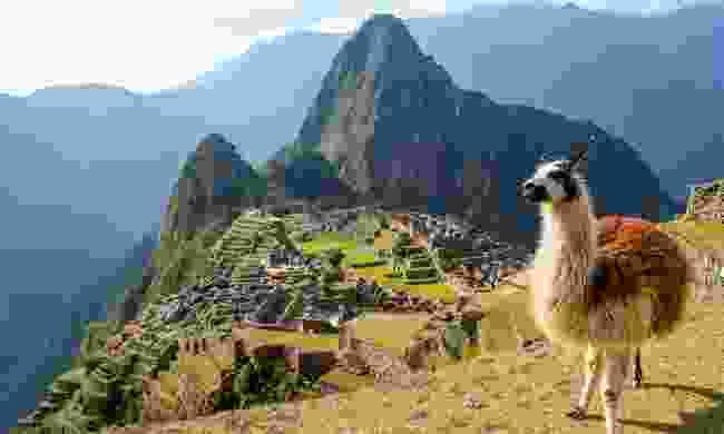 Gaze upon the iconic Machu Picchu (Newmarket Holidays)