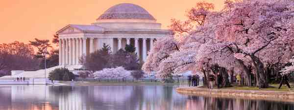 Washington Tidal Basin (Shutterstock)