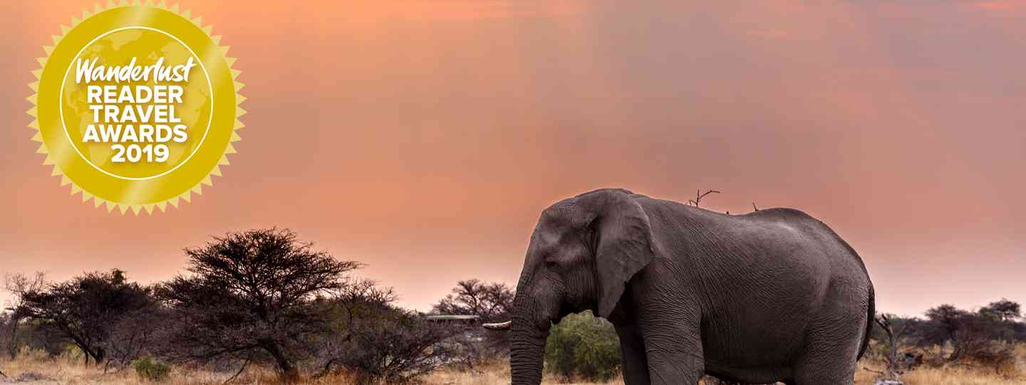 Namibia has been voted top destination for 2019 (Shutterstock)