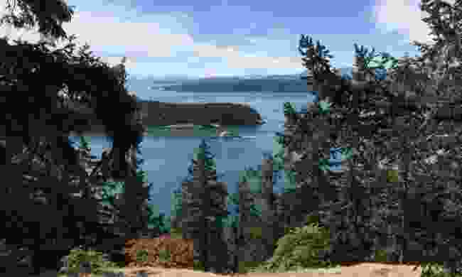 Galiano's viewpoint over the bluffs (Shutterstock)