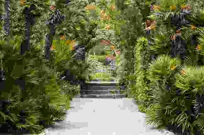 Tresco Abbey Garden, Isles of Scilly (Shutterstock)