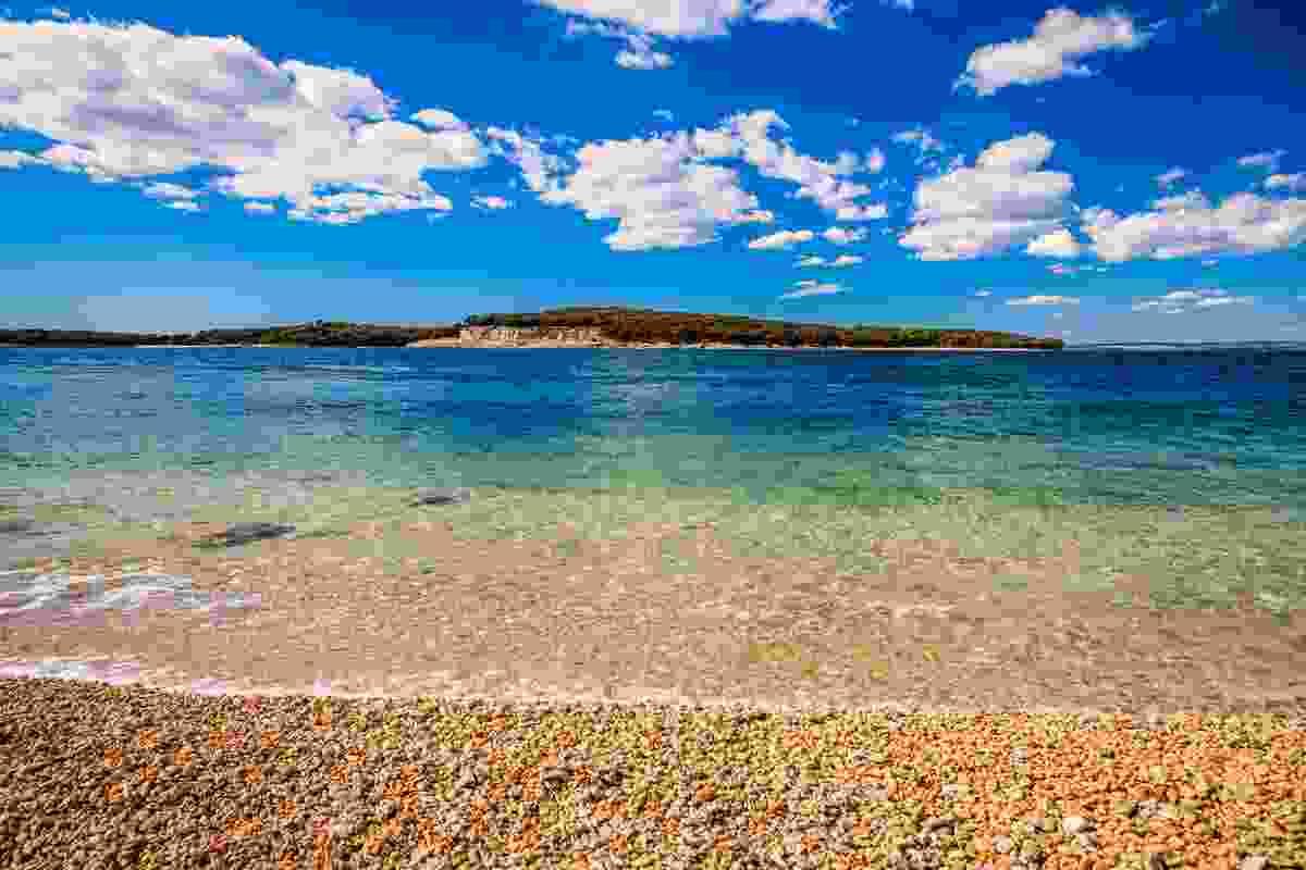 Brijuni Islands National Park, Istria, Croatia (Shutterstock)