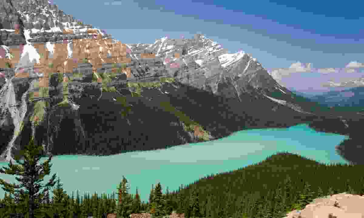 Peyto Lake, Canada (Dreamstime)