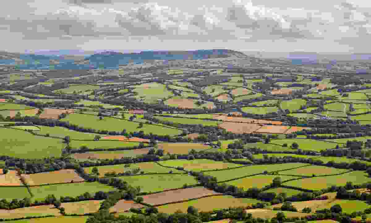 View over patchwork fields from Offa's Dyke Path (Shutterstock)