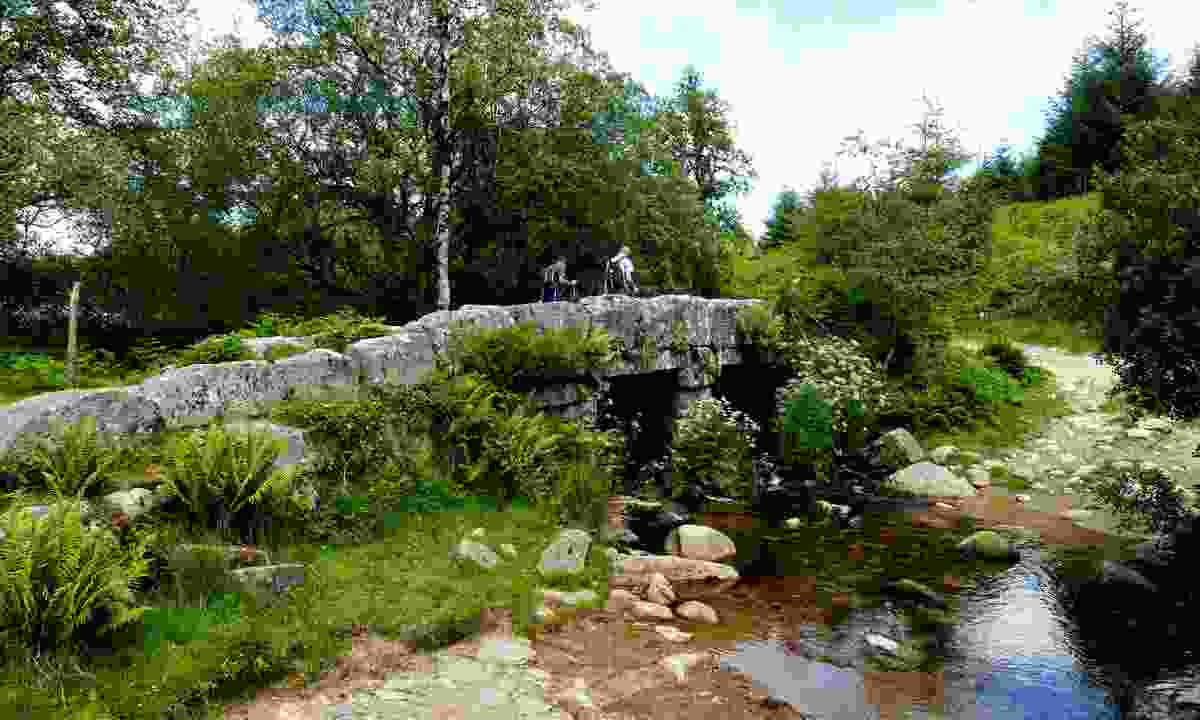 Granite pack horse bridge located in woods above Burrator reservoir (Shutterstock)