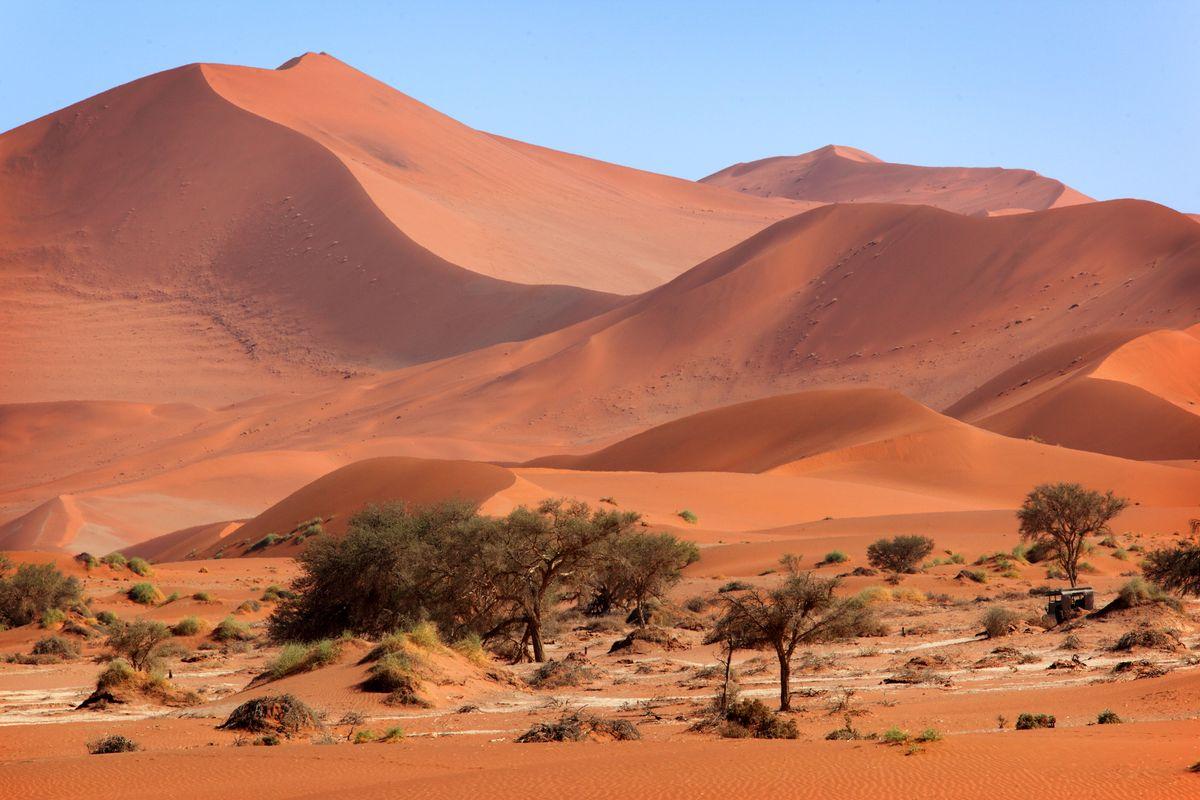 Namib Desert, Namibia. (Dreamstime)