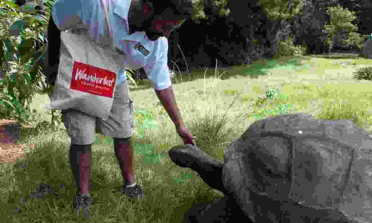 Aaron feeds Jonathan the tortoise (Lyn Hughes)