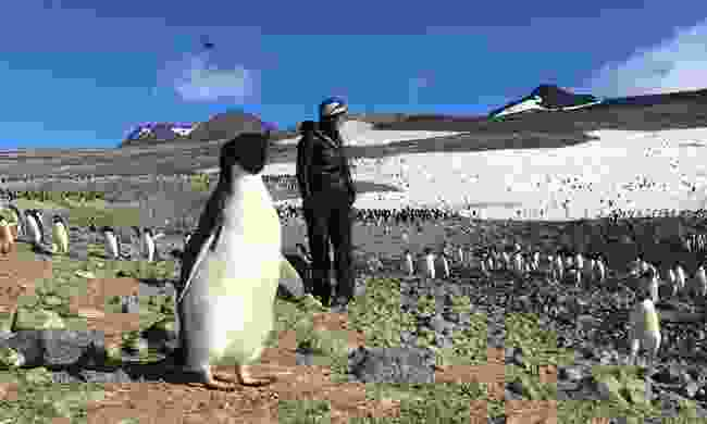 Julie marching with the penguins in Antarctica (Julie Monière)
