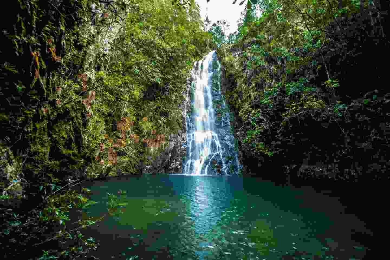 Belize waterfall. (Belize Tourist Board)
