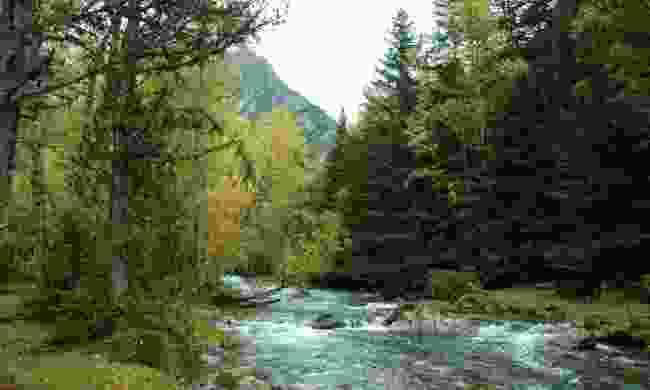River in Alt Pirineu Natural Park (Marc Garriga)