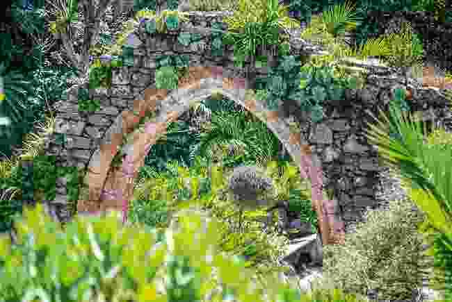 Tresco Abbe Gardens, Isles of Scilly (Wanderlust)