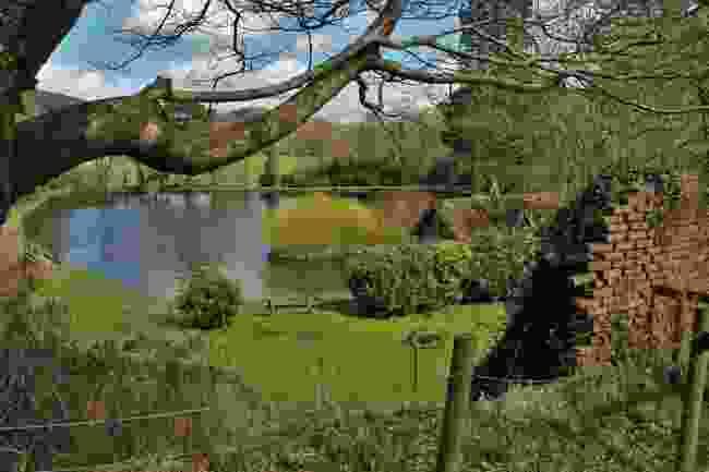 Craig-y-Nos Country Park (Shutterstock)