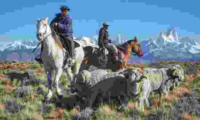 Gauchos in Patagonia (Shutterstock)