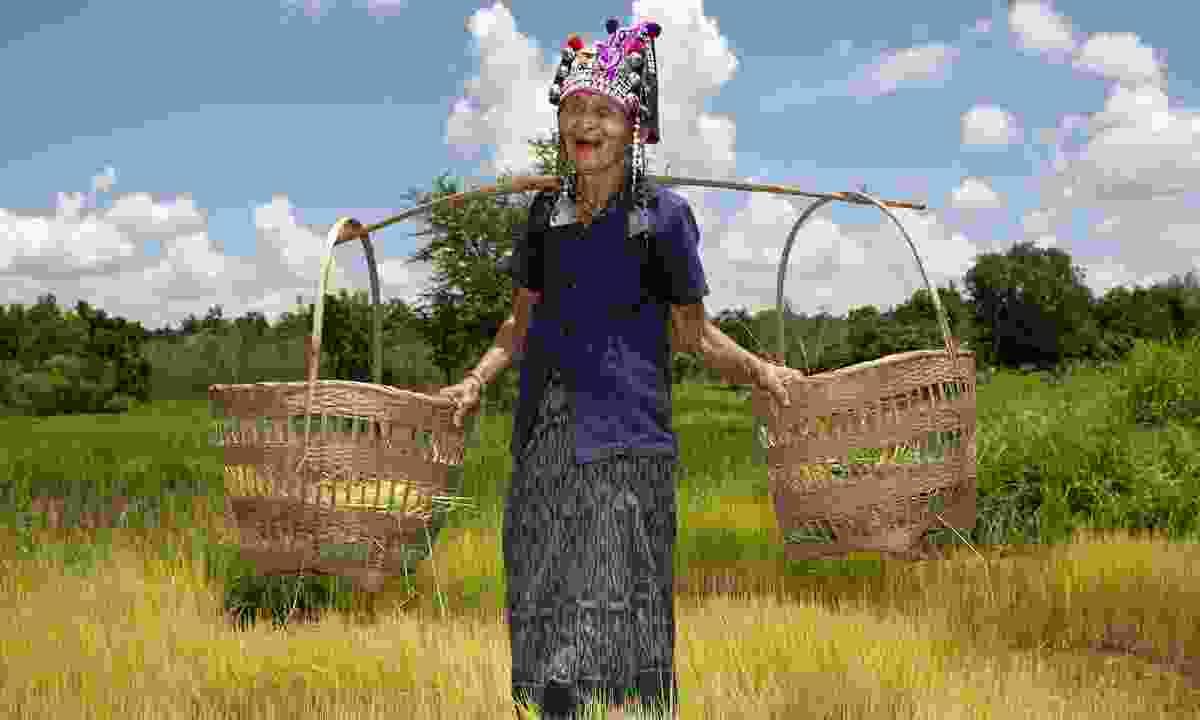 An Akha Puxo woman working the rice paddies in Phongsali (Dreamstime)