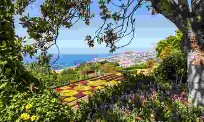 The famous Botanical Garden in Funchal (Dreamstime)