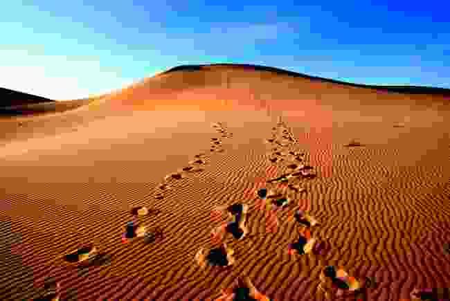 The Gobi Desert, Mongolia (Shutterstock)