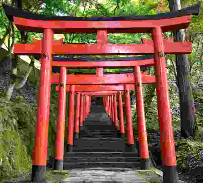 The red torii gates leading towards the castle ruins