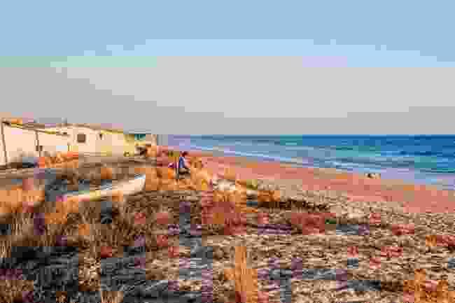 The beaches fringing Ria Formosa NP (AWL)