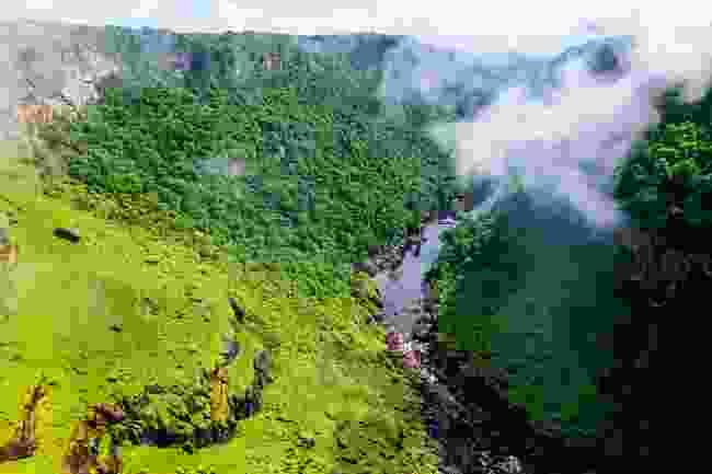 Guyana looks like a lost world cloaked in fog (Sarah Marshall)