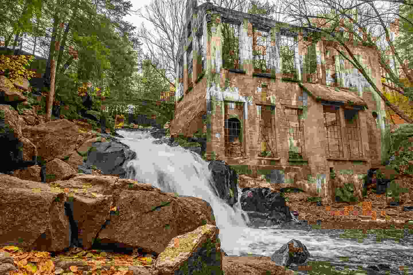 Thomas 'Carbide' Willson's home is now a nature-filled ruin (Shutterstock)