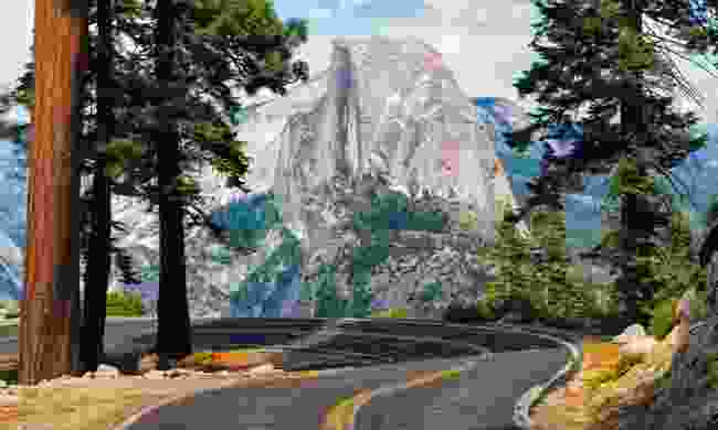 A road in Yosemite National Park (Dreamstime)