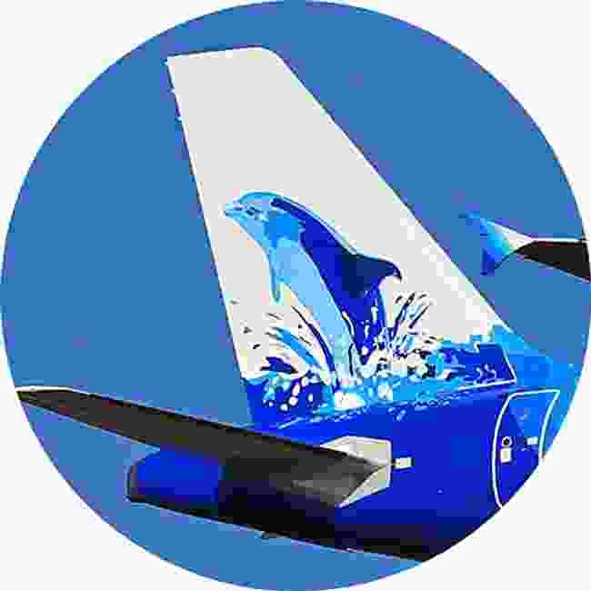 The happy dolphin of Maldivian Island Aviation Services (Shutterstock)