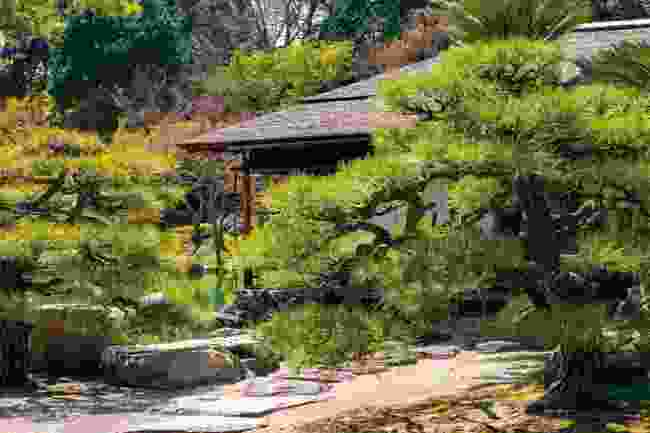 Immerse yourself in nature at one of Setouchi's gardens (Shutterstock)