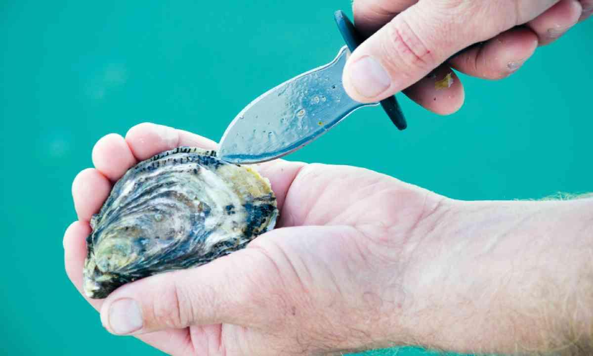 Shucking an oyster (SATC)