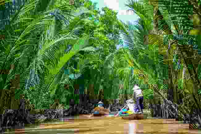 Enjoy slow rides along the Mekong Delta (Shutterstock)