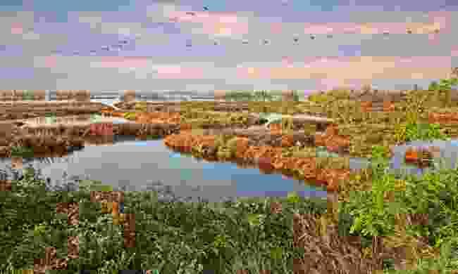 The Po River delta, Veneto (Shutterstock)
