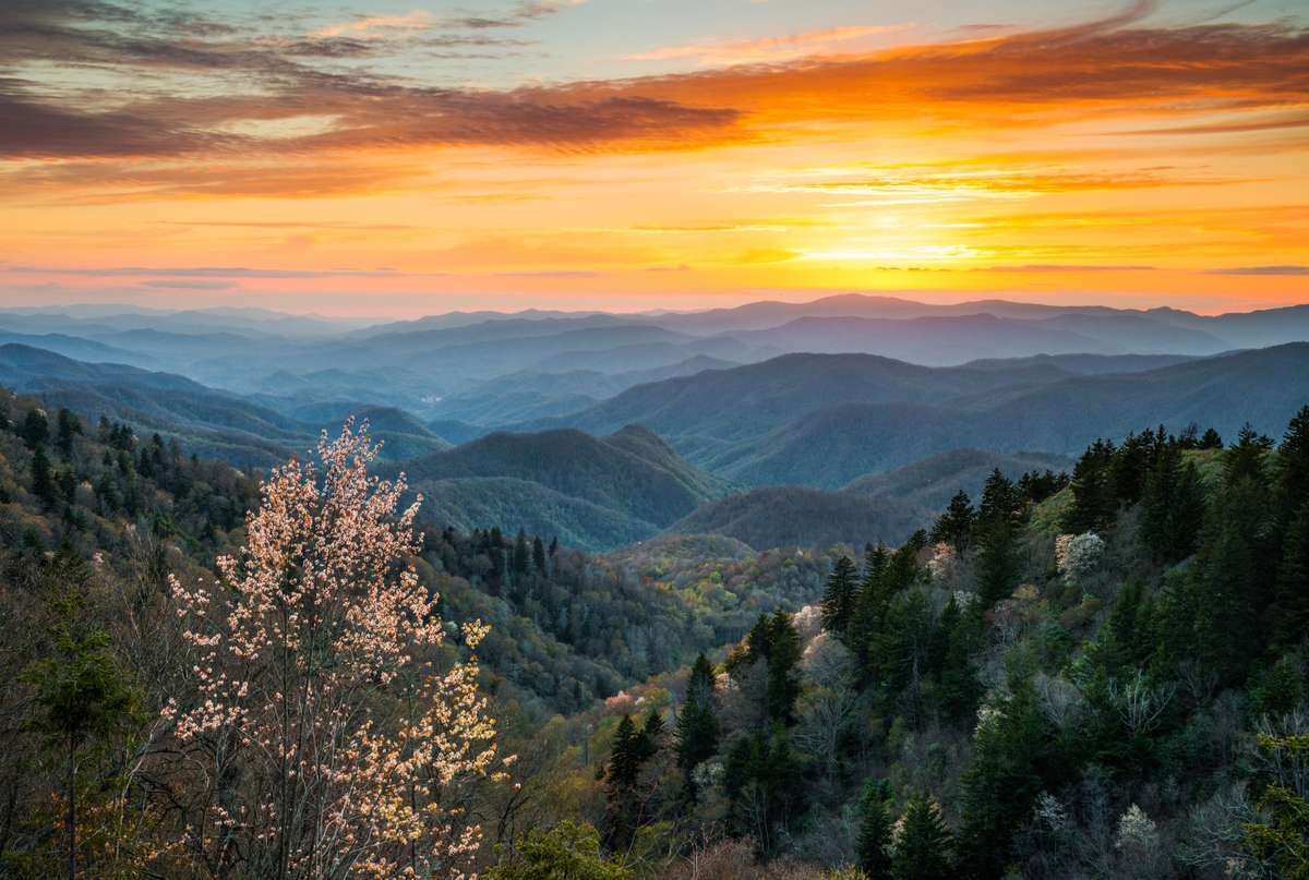 Smoky Mountains National Park (Dreamstime)