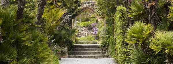 Tresco Gardens, Isles of Scilly