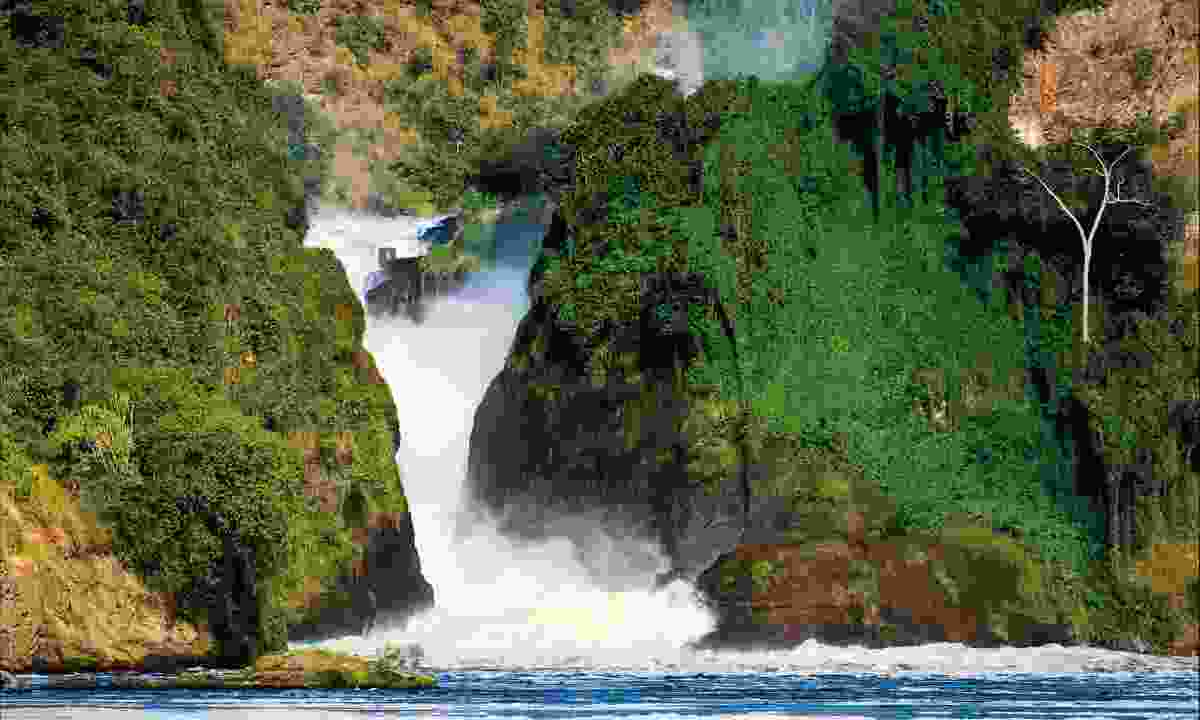 Murchison Falls National Park (Dreamstime)