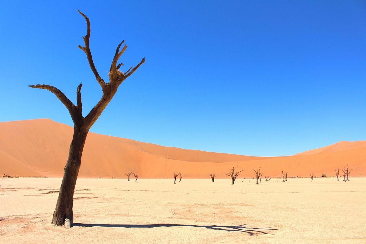 Sossusvlei, Namibia (Graeme Green)