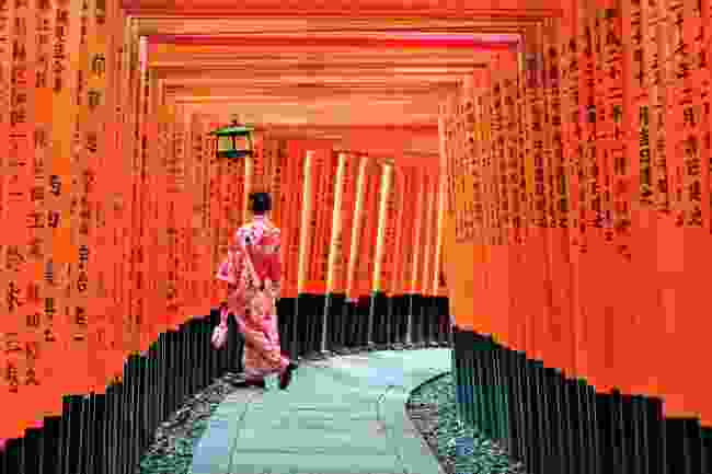 The vermillion pathway of torii gates at the Fushimi Inari shrine in Kyoto (AWL)