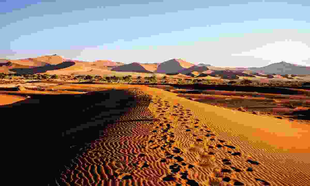 Namibian desert (Shutterstock)