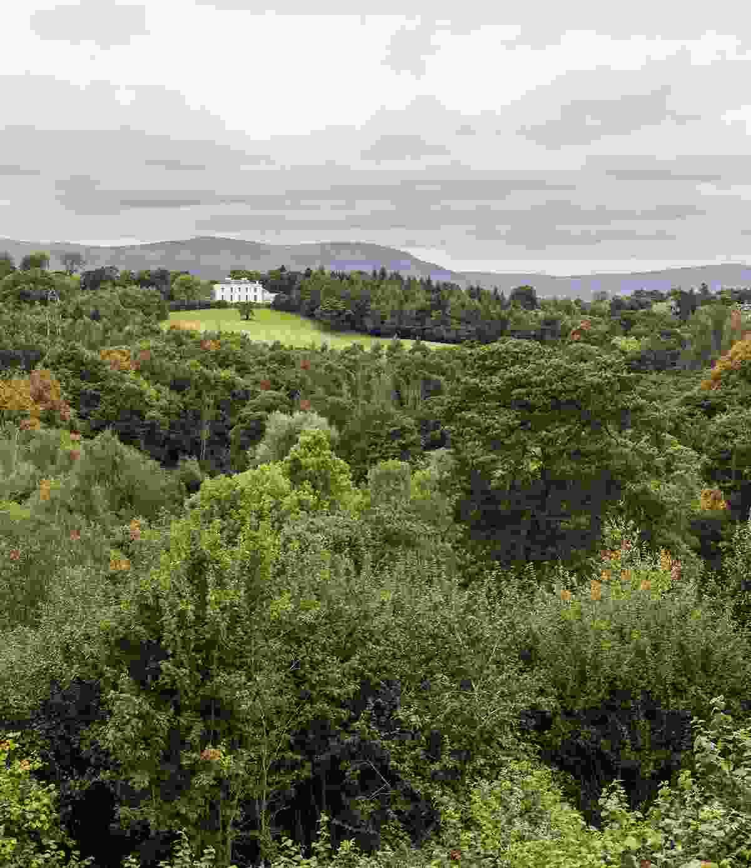 A beautiful view over Minnowburn (Shutterstock)