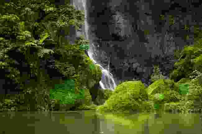 Papenoo Valley, Tahiti (Shutterstock)